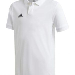 Koszulka Polo adidas Junior Team 19 DW6875 Rozmiar 164