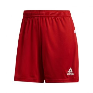Spodenki damskie adidas Team 19 DX7296 Rozmiar L (173cm)