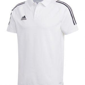 Koszulka Polo adidas Condivo 20 EA2517 Rozmiar S (173cm)